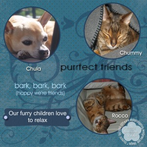 Blue pet scrapbook page