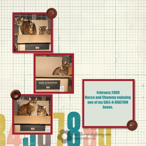 stampin up sale-a-bration bengal cats