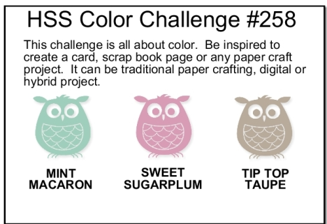 hss-color-challenge-001