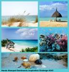HSS_343_Beach_Inspiration