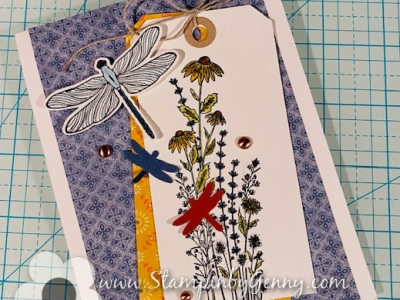 Dragonfly card made with Stampin Up Dragonfly Garden